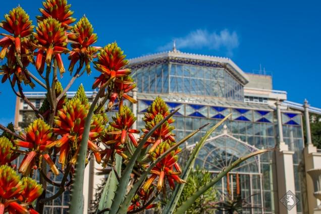 botanic-garden-20